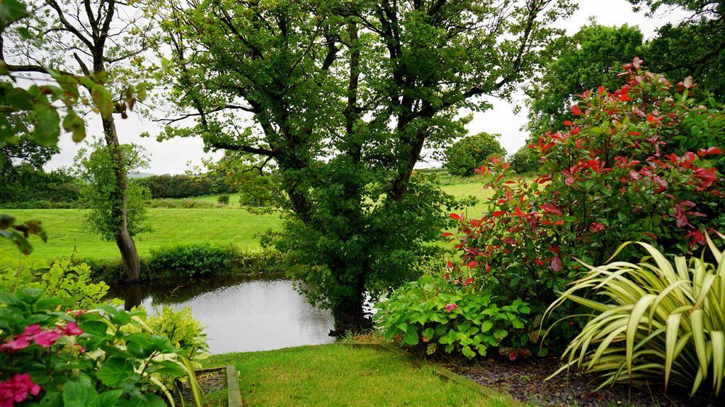 Hekwerk vijver tuin